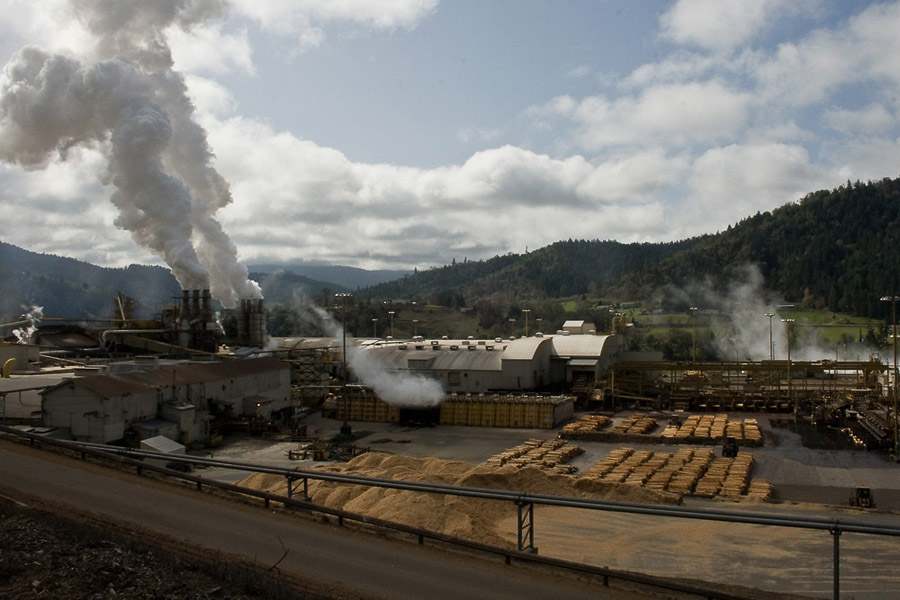 "A mill that processes Roseburg Forest Products timber into plywood, particleboard, stud lumber, and melamine, in Dillard, OR. ""They're designed to run 24 hours, seven days a week, and if they're not they're losing money,"" says Brant."