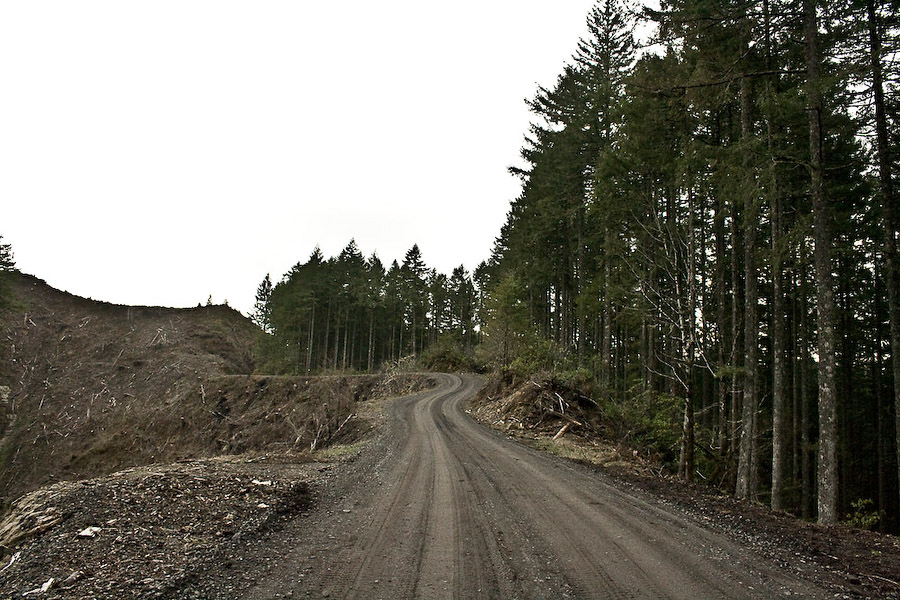 "In July of 2009, when Roseburg Forest Products, one of the largest privately owned corporations in the nation, went to cut a tract of 80 to 100 year old trees (""mature growth"") on the Umpcoos Ridge of the Elliott State Forest, loggers found dozens of masked Earth First! activists blockading the road with barrels, slash piles, and an overturned van. Several protestors sat in delicate treetop installations, called ""bipods"" and ""skypods"" intended to collapse and kill the sitters if tampered with."