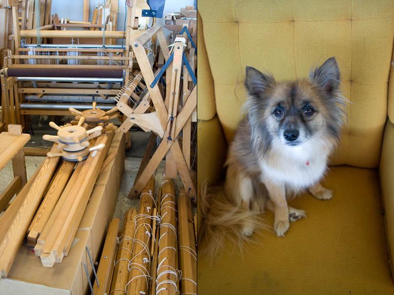 Classic looms stored away inside Studio Gorm and the couple's dog, Juji.