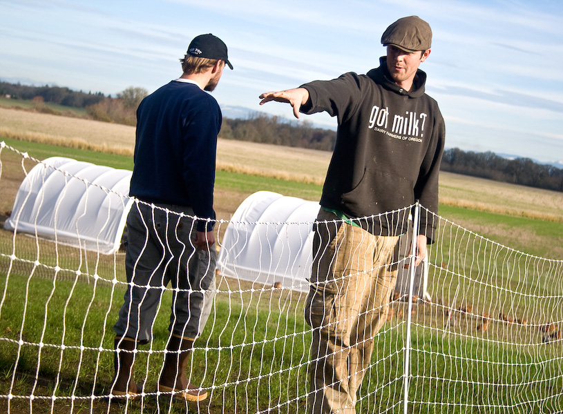 Tyler always has the last word on what happens on the farm but never stops listening either. Here he and Kyle, a local friend, work out where to stake the poultry pens.